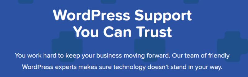 wordpress customer service wp site care