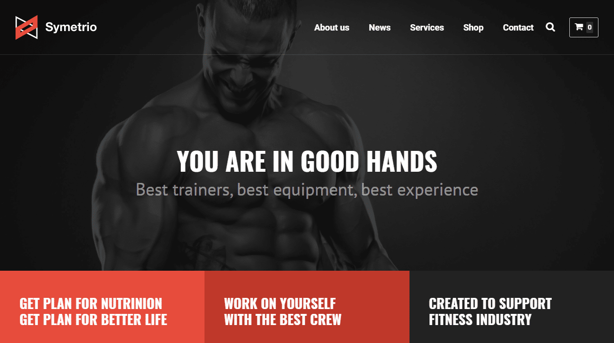 30 best health and beauty wordpress themes 2017 create and code